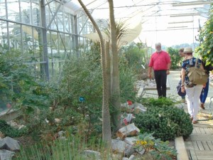 serre-botanique-centre-fabre